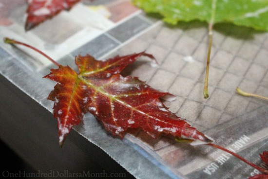 wax-dipped-leaves