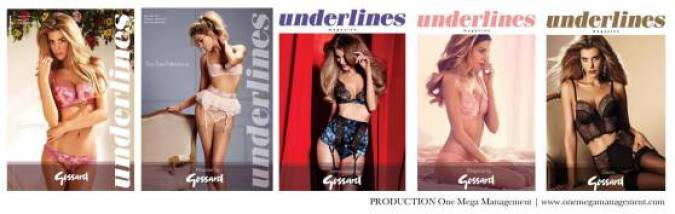lingerie Insight covers