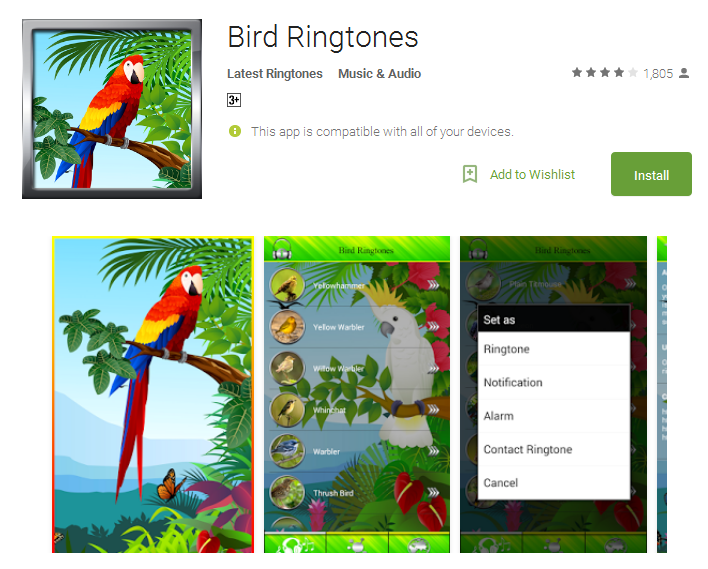 Bird Ringtones free app for Android