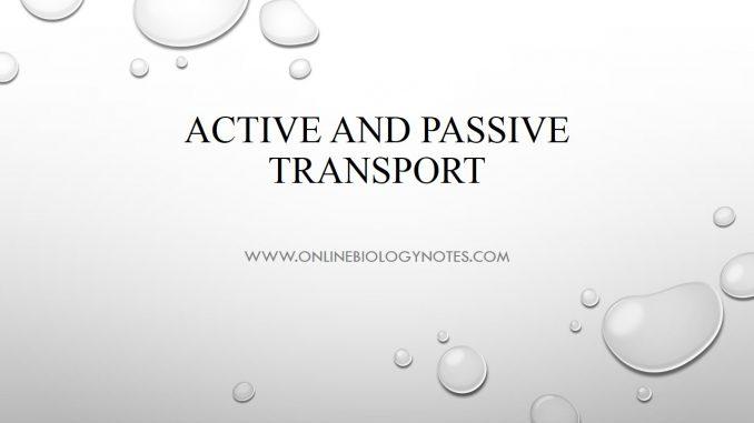 Membrane Transport System-Passive And Active Transport - sampling