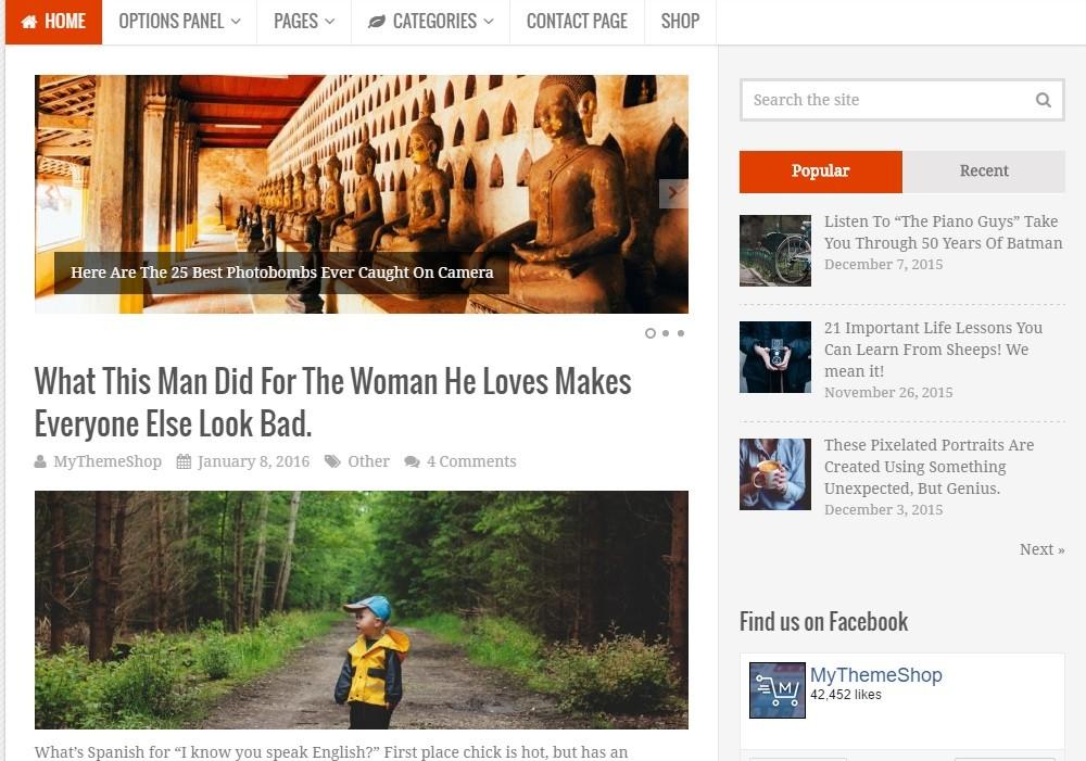 Truepixel Viral WordPress Theme