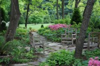Full Shade Garden Ideas Photograph | ... some shade loving p