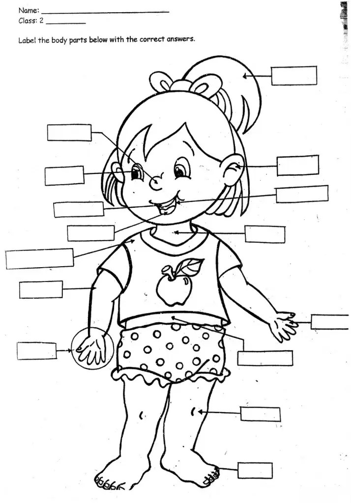 coloring pages for kids-parts of the body Only Coloring Pages