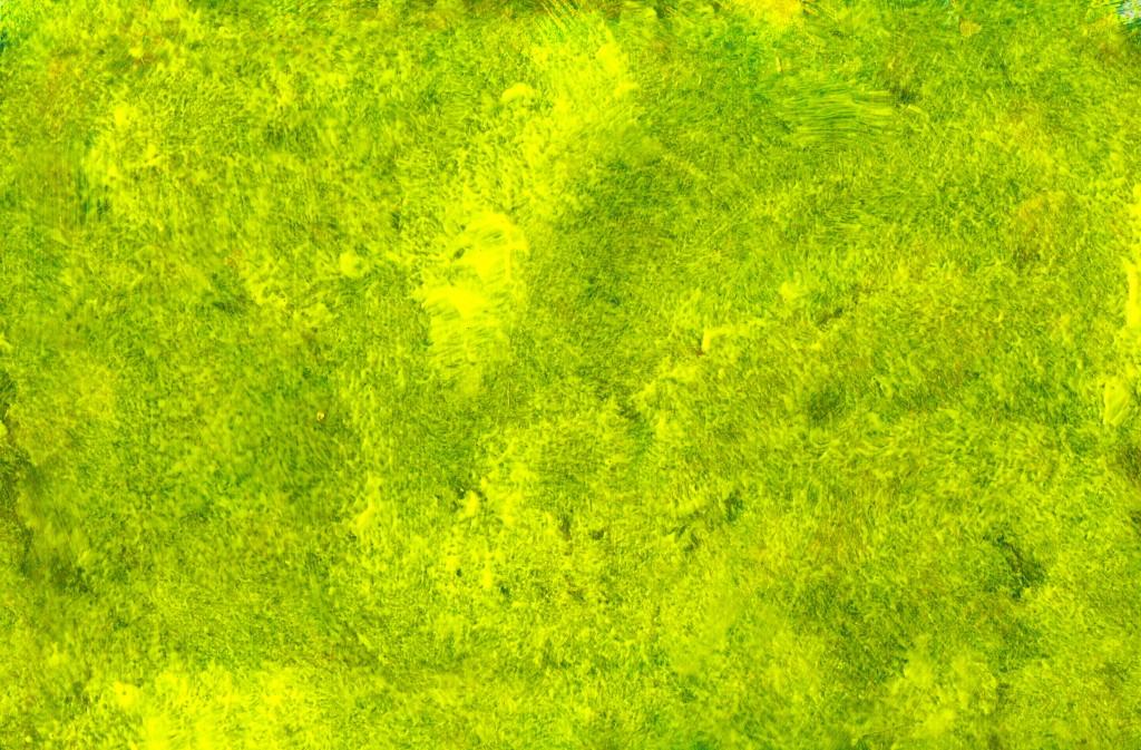 Yellow-Green Paint Texture (JPG) OnlyGFX