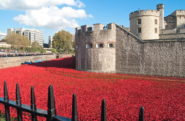 Moat of poppies at the Tower of Lodon