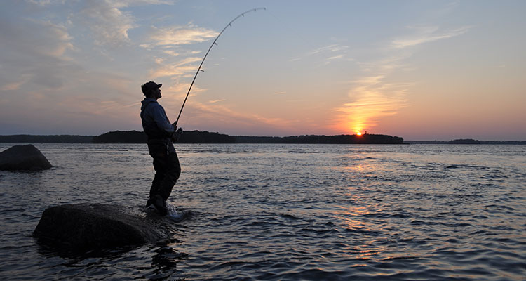 Peak And Slack Tides For Big Stripers - On The Water