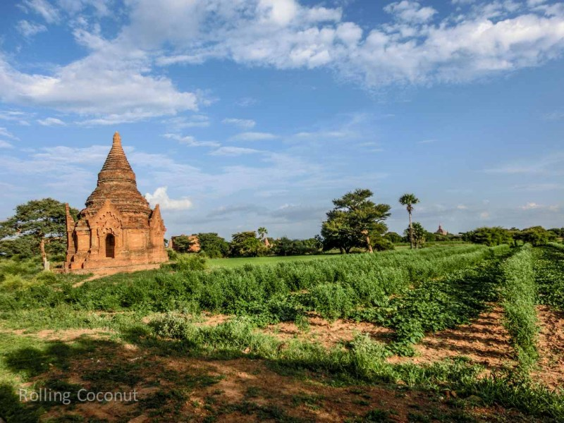 Stupa in Field Bagan Myanmar Ooaworld Rolling Coconut Photo Ooaworld