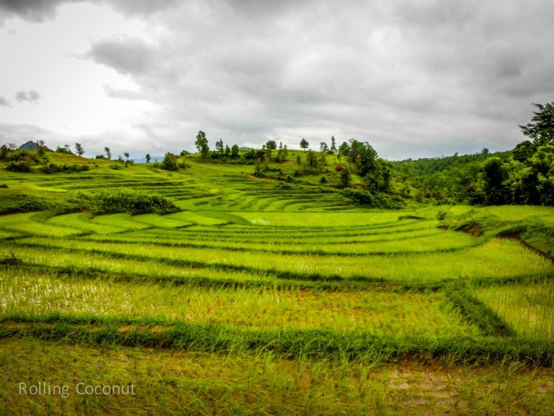 Kalaw Inle Lake Trek Myanmar Rice Fields Landscape Photo Ooaworld
