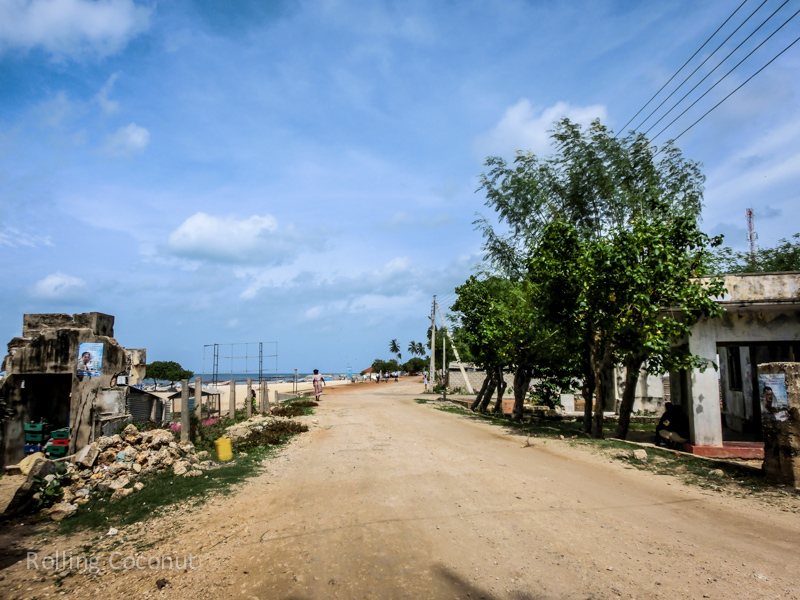 Road Point Pedro Things To Do in Jaffna Sri Lanka ooaworld Rolling Coconut Photo Ooaworld