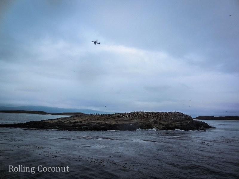 Ushuaia Argentina Cormorant Island Beagle Channel ooaworld Rolling Coconut Photo Ooaworld
