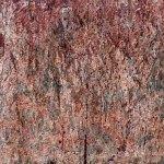 beijing life on mars photo ooaworld
