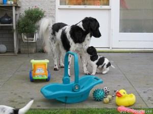 met Oma buiten spelen