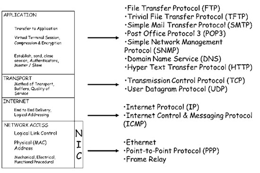 The purpose of network hardware and protocols View as single page