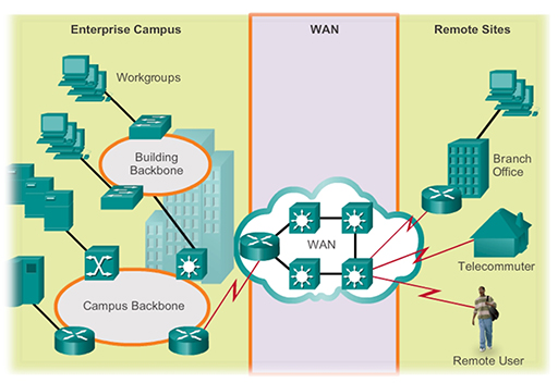 The operation of LAN and WAN hardware and protocols View as single page