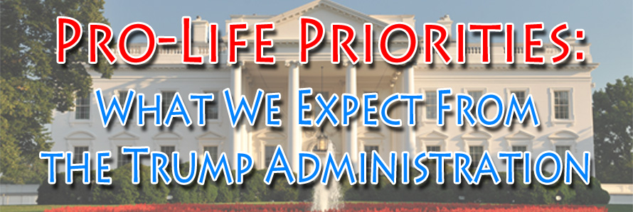 prolife-priorities-banner