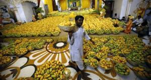 India mangos central