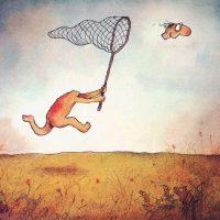 butterfly-net