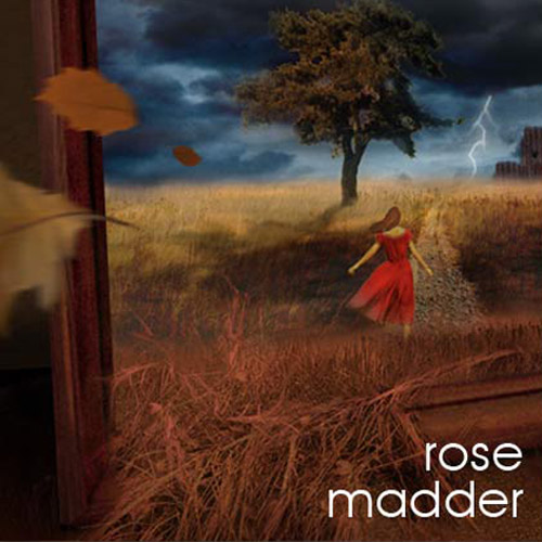 Stephen King's Rose Madder Being Brought to Life in Theaters