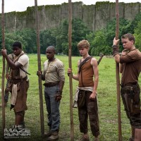 "New Still From ""The Maze Runner"" Released"