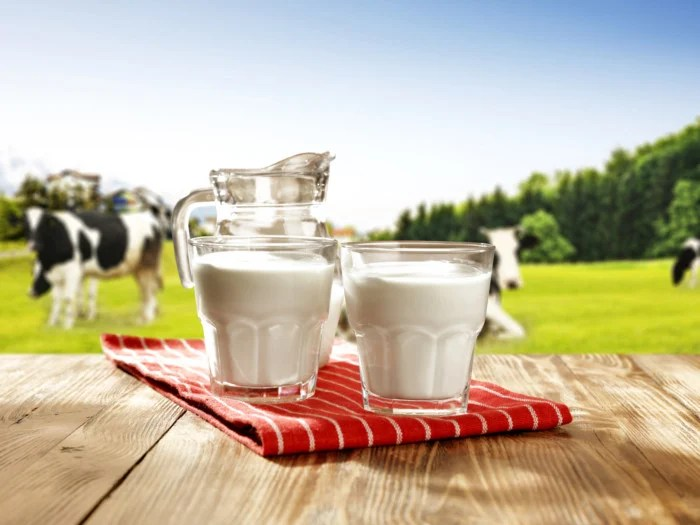 7 Incredible Cow Milk Benefits Organic Facts
