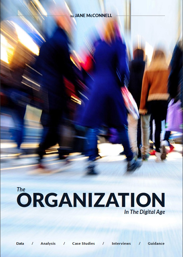 Contents THE ORGANIZATION IN THE DIGITAL AGE