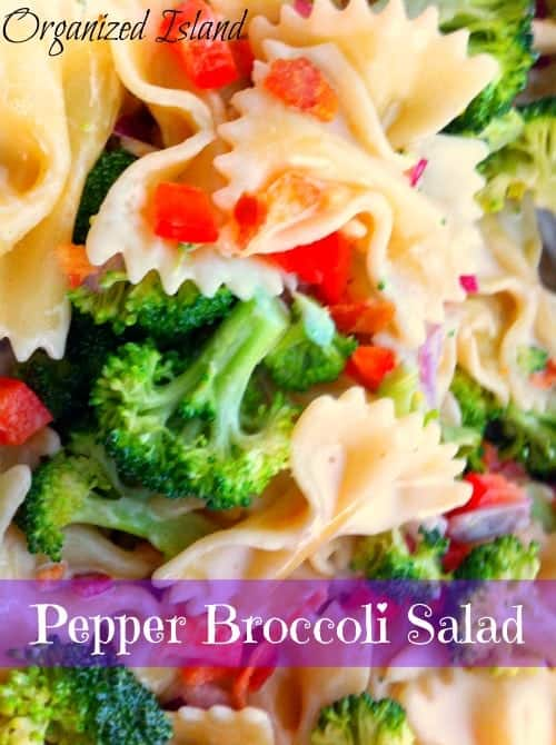 Pepper and Broccoli Pasta Salad