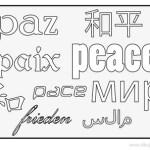 paz-idiomas