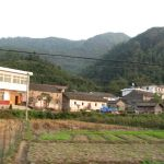 "Chinese ""hinterland"" with bamboo forests in the background"