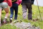 ecotourisme-Fotolia_5631396
