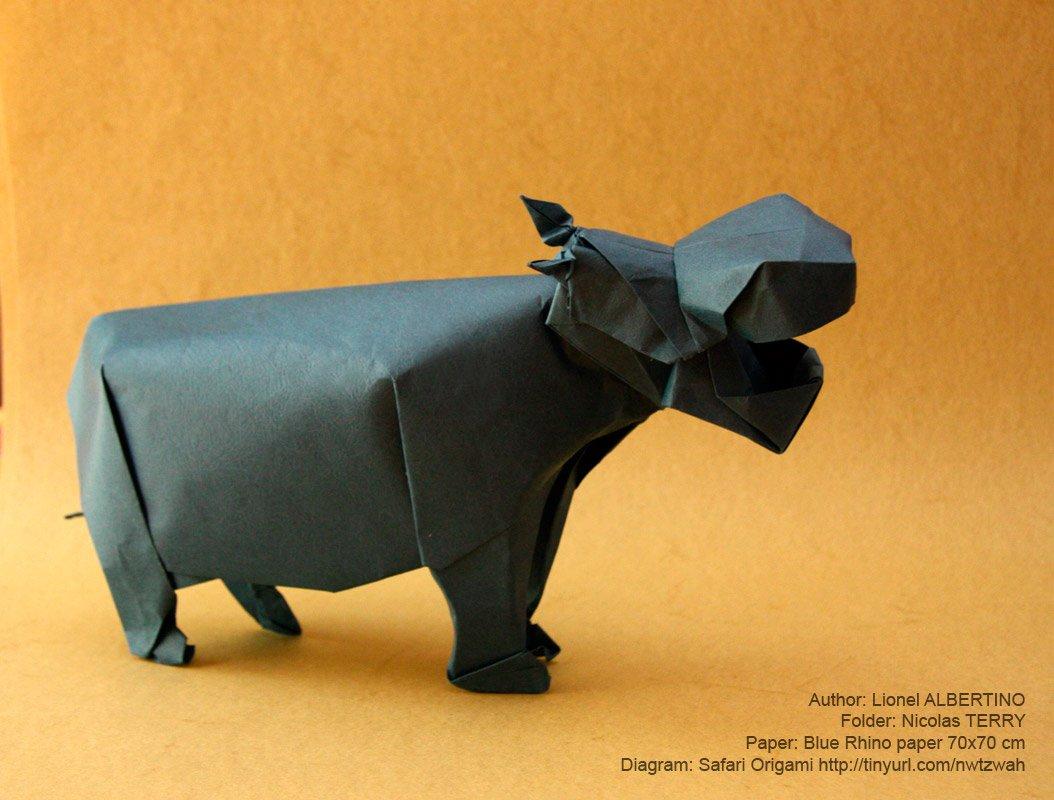 Essay On Rhinoceros - Ivoiregion
