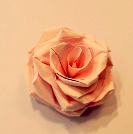 Origami Rose by Sipho Mabona
