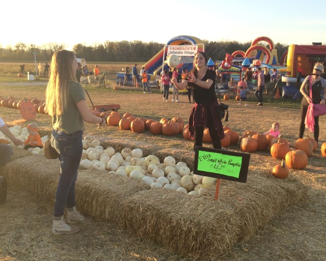 "Give 'Em ""Pumpkin"" To Talk About-A Day At The Pumpkin Patch. Original Sam Smith"