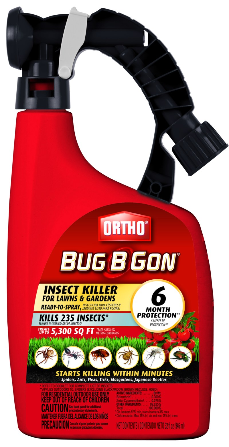 Large Of Bug B Gone