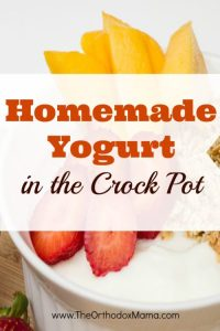My Frugal DIY Experiments: Homemade Yogurt in the Crock Pot