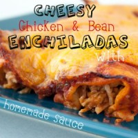 Chicken Enchiladas Pinterest No Border