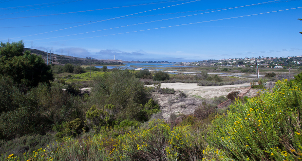 The Riehl World: Carlsbad Lagoon Foundation No Friend of Nature