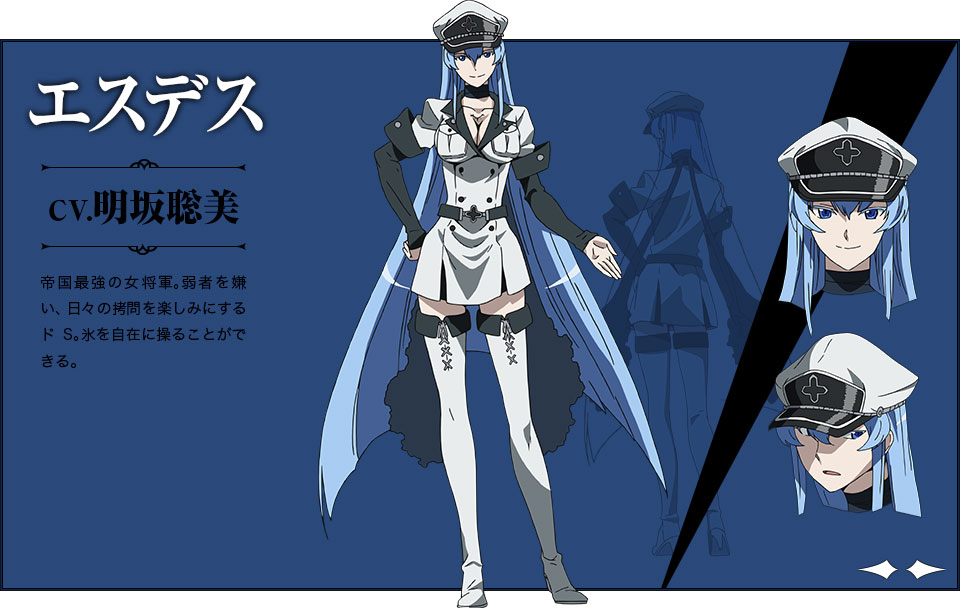 Character Design Quotes : Images about akame ga kill on pinterest