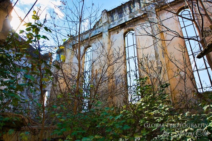 inside bombed building beirut