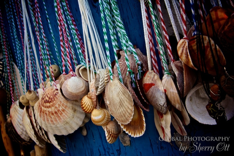 camino shells
