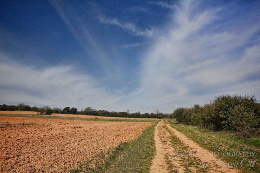 camino meseta