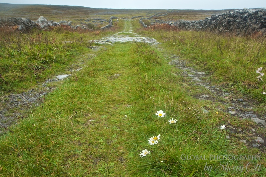burren ireland walking trails