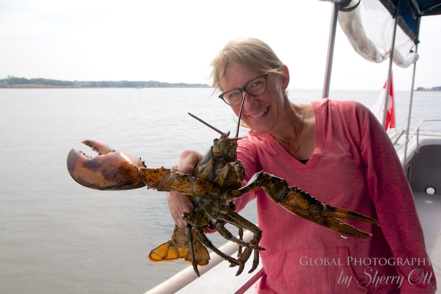 Canadian Lobster Fishing charter PEI Canada