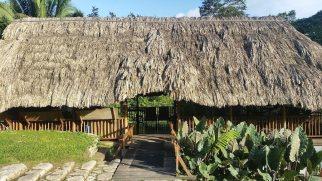 Pooks Hill Belize Jungle Lodge