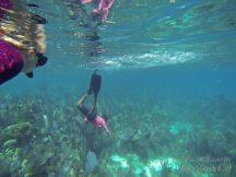 Belize Snorkeling Silk Cayes Placencia