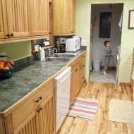 """""""Green Your Cleaning"""" Series-The Kitchen"""