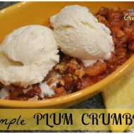 Simple Plum Crumble Recipe