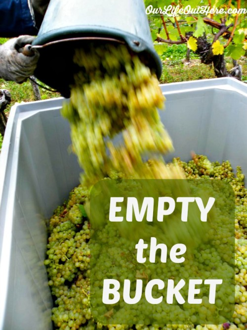 "We all need a mantra--a simple phrase that reminds us why we do what we do. It can get it through the tough times when we want to give up on our goals. Read what ""Empty The Bucket"" means for your goals. #goalsetting #dreams #chaseyourdreams"