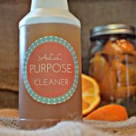 This citrus All Purpose Cleaner is completely non-toxic and costs only pennies to make! #homemadecleaners