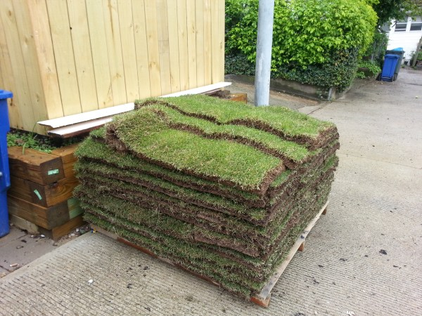Sod Arrives