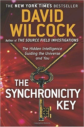 David Wilcock Outer Limits of Inner Truth